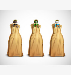 Beer bottles in paper bags vector
