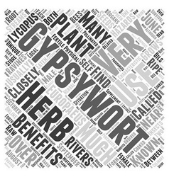 Gypsywort word cloud concept vector