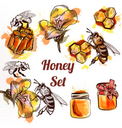 Honey set or collection elements with bees vector