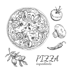 Ink hand drawn pizza ingredient set vector