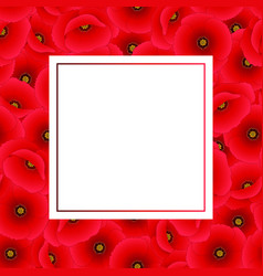 Red corn poppy banner card vector