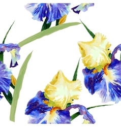 Seamless pattern with watercolor irises-02 vector image