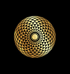 Torus yantra gold hypnotic eye sacred geometry vector