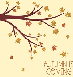 an Autumn Design with Autumnal Branch vector image vector image