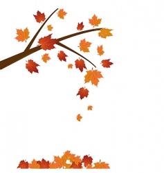 maple tree vector image