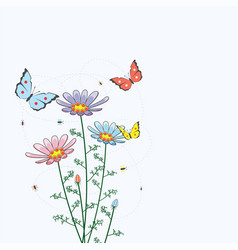 camomile flowers and butterflies vector image