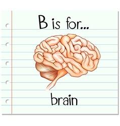 Flashcard alphabet B is for brain vector