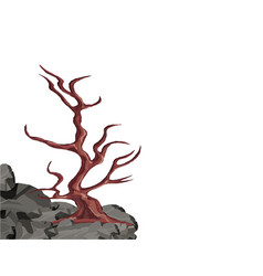 Landscape a curved tree without leaves on a rock vector