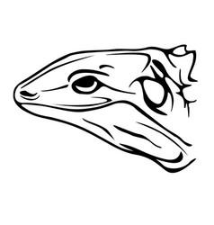 Lizard profile vector