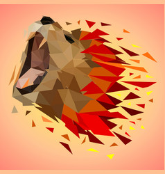 low poly colorful lion background vector image