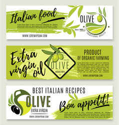 Olive oil banner template set with green branch vector