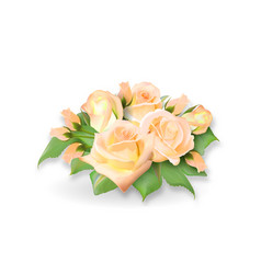 Roses bouquet tea-rose delicate yellow pink vector