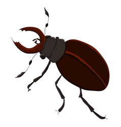 the horned beetle drawing by vector image