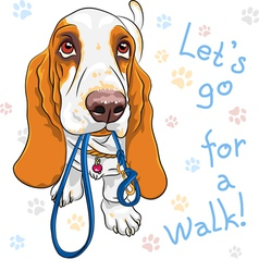 dog Basset Hound breed wants to walk vector image