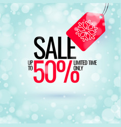 winter sale banner original poster for discount vector image vector image