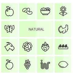 14 natural icons vector