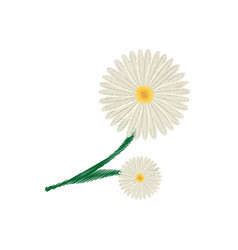 Drawing daisy flower ornament image vector