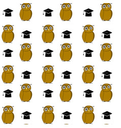 education pattern woth owl and hat vector image