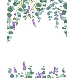 Eucaliptus and lavender elements design template vector
