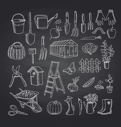 gardening doodle icons on black chalkboard vector image