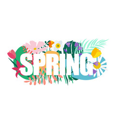 natural flowers spring background vector image