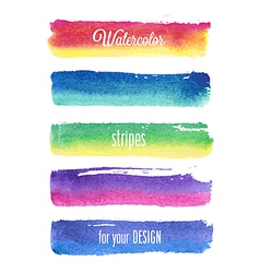 watercolor strokes vector image