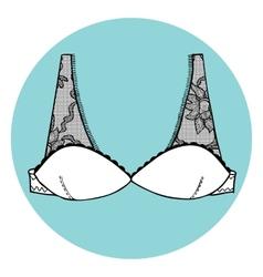 Lacy sexy bra vector image