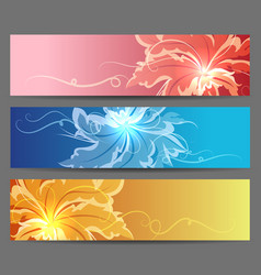 colorful flower banners set vector image