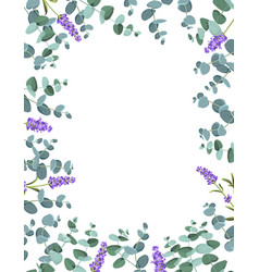 eucaliptus and lavender elements design template vector image