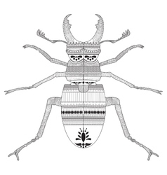 Hand drawing a beetle with elements of ornament vector image