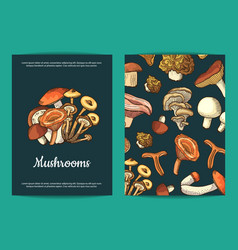 hand drawn mushrooms brochure template vector image