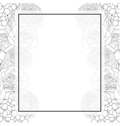 Rose hydrangea and ranunculus outline banner card vector