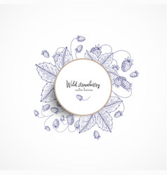 round banner with wild strawberry vintage vector image