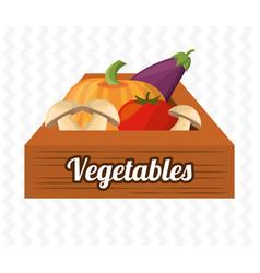 vegetables wooden box harvet image vector image