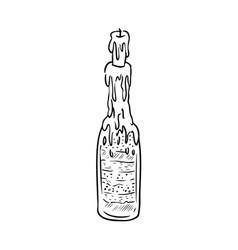 Witch bottle doodle sketch bottle filled vector