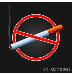 No smoking vector image