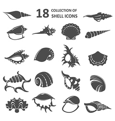 Collection of shell icons vector