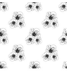 white plum blossom seamless on white background vector image