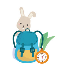 Camping cute rabbit rucksack and compass leaves vector