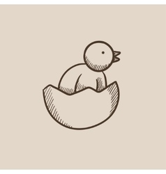 Chick peeking out of egg shell sketch icon vector image