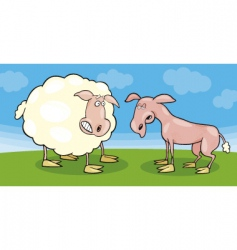 Frightened sheep and shaved one vector