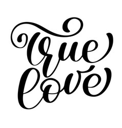 Phrase true love on valentines day hand drawn vector