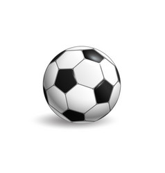 soccer ball layout isolated on white background vector image