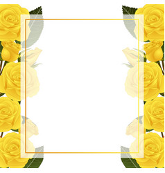 Yellow rose flower banner card border vector
