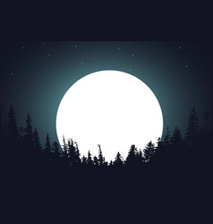 Forest night moon vector