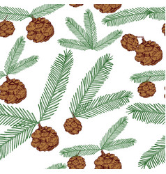seamless pattern tree twigs and cones painted line vector image vector image