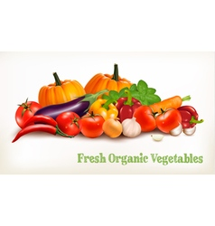 Background With Organic Fresh Vegetables Healthy vector