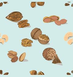 Colorful nuts and seeds seamless pattern vector