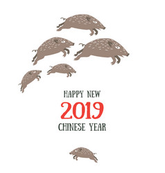 happy new 2019 chinese year boar vector image