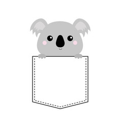 koala bear head face sitting in the pocket vector image